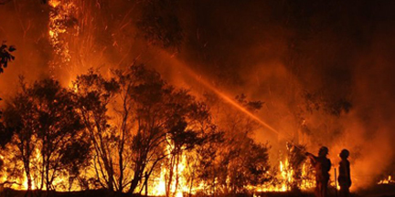 El 77% de los países observaron un aumento en la población diaria expuesta a incendios forestales desde 2001. / EP