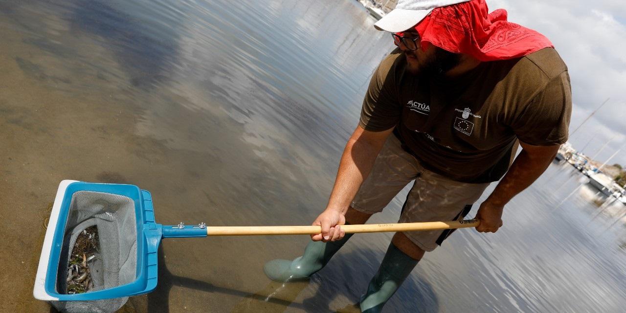 La contaminación de la laguna ha provocado la aparición de peces muertos en sus costas. /EP